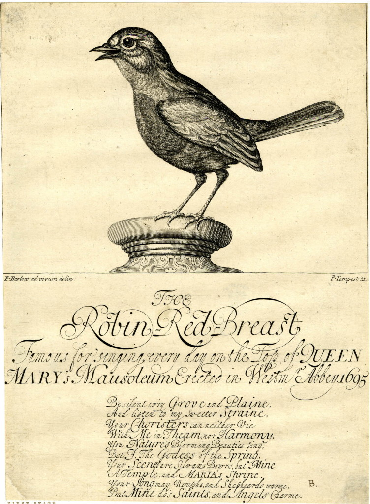 This is the original form of publication of this plate, as a sort of broadside issued at the funeral of Queen Mary, where the singing robin achieved widespread attention. The plate was later cut down and recycled in Tempest's series of birds after Barlow